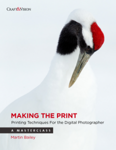 Making the Print: Printing Techniques for the Digital Photographer